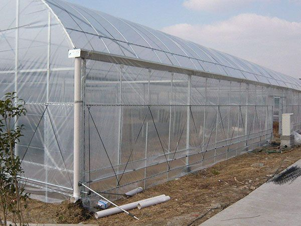 陽光板溫室建造